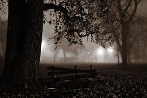Noche-oscura